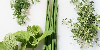 Water Saving Seminar: Herb Your Enthusiasm: Herb Gardening