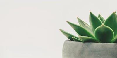 Explore the Garden Family Night: Indoor Gardening, Indestructible House Plants