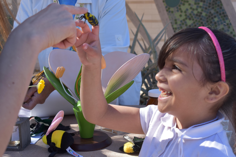 CORPORATE VOLUNTEER FAD: Flutter Fest at the Desert Botanical Garden