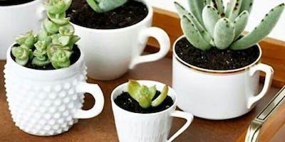 I'm a Succa for a Good Cactus!