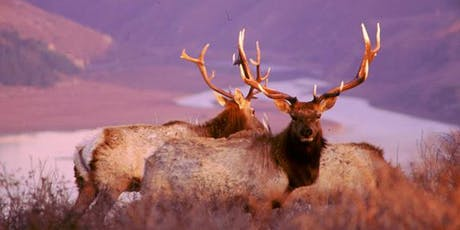 Rooting for the Rut! tickets