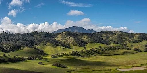 Native Flora & Fauna Hike – Briones Regional Park