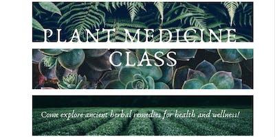 Plant Medicine Class