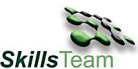 SKILLS TEAM Ltd logo