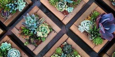 Vertical Garden Succulent Workshop