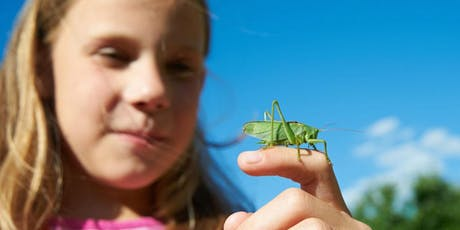 Girls in Science: Whats buggin' you? Insects tickets