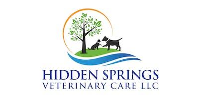 Elderly Pet Health Issues
