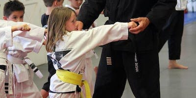 Free Karate Seminar/Board Breaking