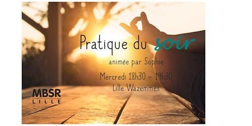 MBSR-Lille : Pratique du soir (Mercredi soir à Lille Wazemmes)