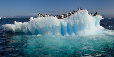 Antarctica: A Unique Outdoor Experience Beyond Your Wildest Imagination!