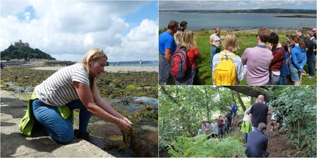 St Michael's Mount Forage and Picnic with wild food expert Emma Gunn tickets