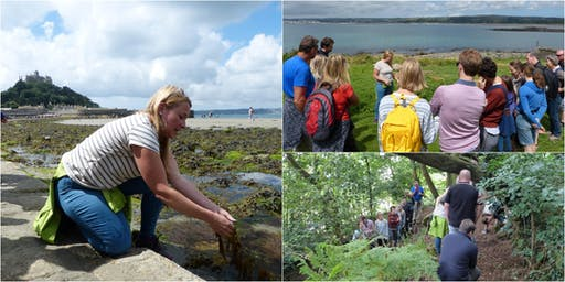 St Michael's Mount Forage and Picnic with wild food expert Emma Gunn