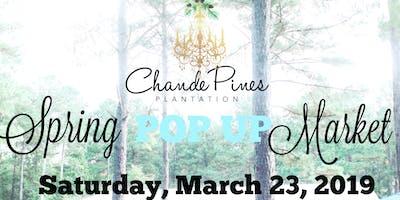 Spring POP UP Market at Chande Pines