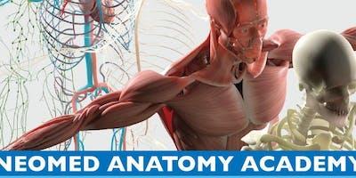 NEOMED Anatomy Academy Session 1: June 17 - June 28, 2019