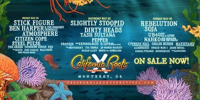 Citizen Cope at California Roots Music and Arts Festival