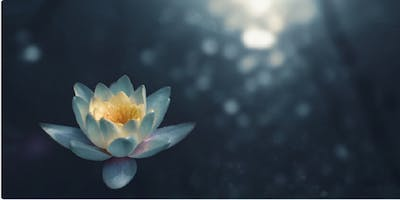 Introductory Meditation Course