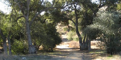Reforest Live Oak Canyon - Day 1