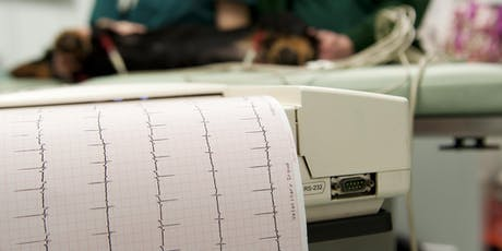 Cardiac Emergencies in the Dog and Cat tickets