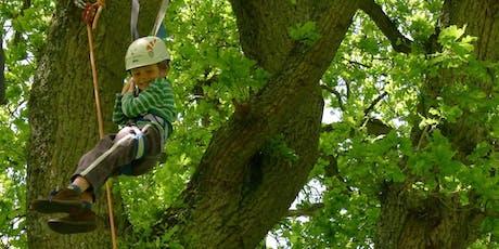 ITT2019 Tree Climbing tickets