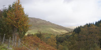 What are Britain's Uplands For? Rejuvenating Radnorshire's Moorlands