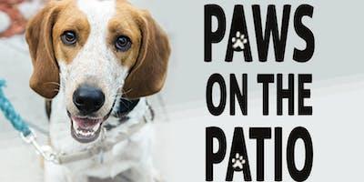 Paws on The Patio to benefit Charleston Animal Society