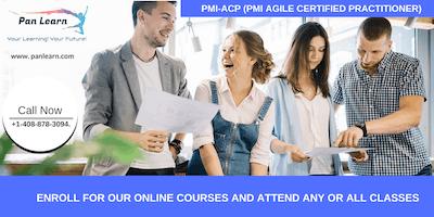 PMI-ACP (PMI Agile Certified Practitioner) Training In Pleasanton, CA