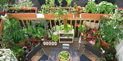 Design Your Ultimate Balcony Garden