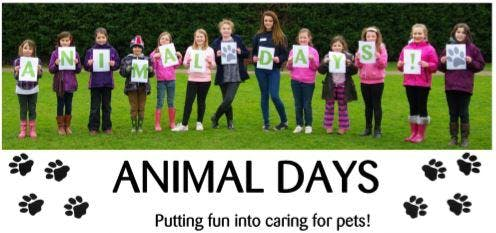 Cheltenham Animal Shelter Experience Day - Do