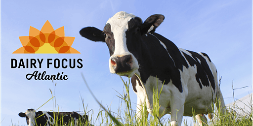 Dairy Focus Atlantic 2020