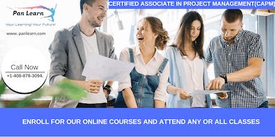 CAPM (Certified Associate In Project Management) Training In Oxnard, CA