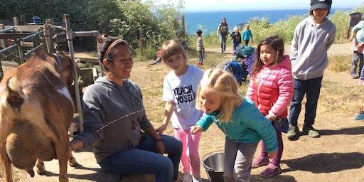Summer Camp at Slide Ranch - Week 5: July 8-12 - Ranch Rangers (5-13) & Jr Environmental Educators (14-18)