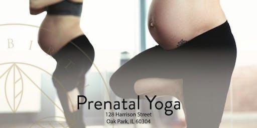 Prenatal Yoga- candlelight