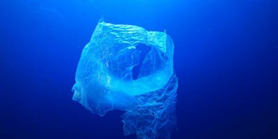 Environmental Impacts of Plastics and Initial Policies for their Control