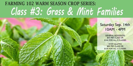 Grass & Mint Families (Warm Season Crop Series) tickets