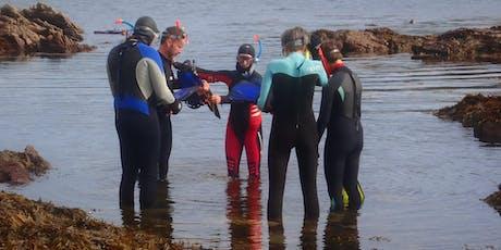 Adults Snorkel Safari tickets