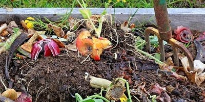 Healthy Garden Series: Compost and Mulch