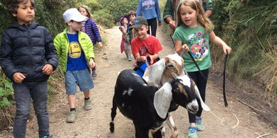 Summer Camp at Slide Ranch - Week 2: June 17-21 - Slide Explorers (5-8) & Jr Environmental Educators (14-18)