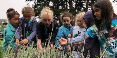 Summer Camp at Slide Ranch - Week 6: July 15-19 - Ranch Rangers (5-13) & Jr Environmental Educators (14-18)