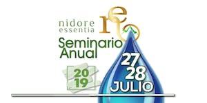 Seminario Anual NE - 2019