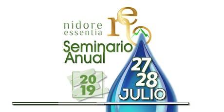 Seminario Anual NE - 2019 entradas