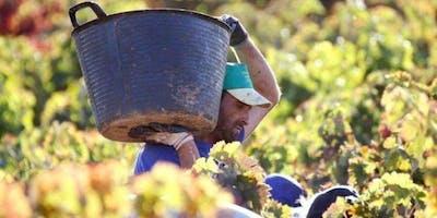 Castilla-La Mancha overzichtsproeverij voor wijnprofessionals