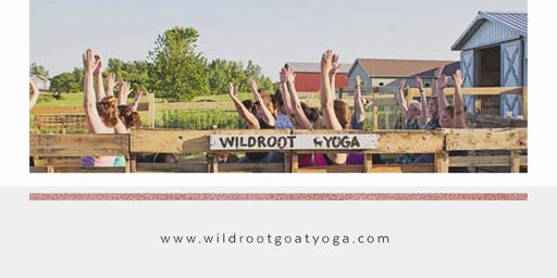 Wildroot Goat Yoga-Aug. 10th