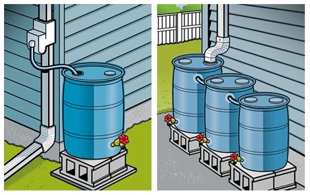 Rain Barrels & Water Conservation for the Hom