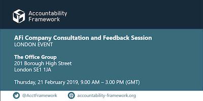 AFi Company Consultation and Feedback Session - Lo