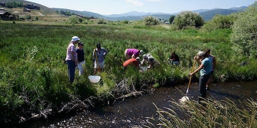 Utah Master Naturalist Watershed Investigations Course - Swaner EcoCenter