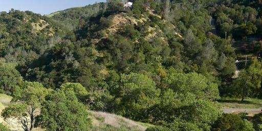 Diablo Restoration Team Workday - Marsh Creek 4 & 6