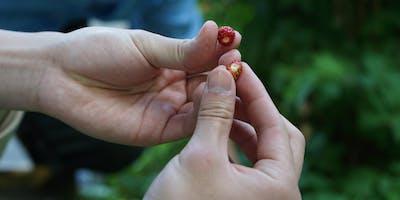 Tastes of the Terroir - British Columbia Study Tour Fundraiser
