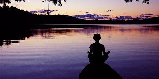 Walk in Meditation Class – Insight Series