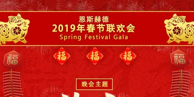2019恩斯赫德学生学者春节联欢会 | 2019 ACSSNL ENSCHEDE CHINESE NEW YEAR GALA