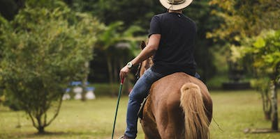 Where to Horseback Ride in the Bay Area